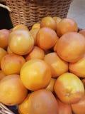 橘栾果柑桔桔子minnelola 库存照片