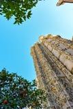 橙树包围的塞维利亚大教堂从下面被看见 免版税库存图片
