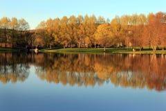 橙树在从池塘的秋天 免版税库存图片