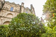 从橙树庭院,西班牙的普拉森西亚大教堂 免版税图库摄影