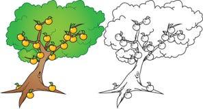 橙树 库存例证