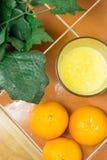 橙汁用桔子 库存图片