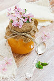 橙皮马末兰果酱 免版税库存照片