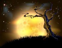 橙色万圣夜月亮树背景 免版税库存照片
