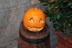 橙色万圣节南瓜背景在比萨 库存图片