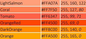 橙色传染媒介例证树荫  免版税库存图片