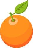 橙色传染媒介被隔绝的例证 免版税图库摄影
