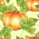 橙色南瓜 3无缝的模式 向量例证