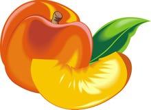 橙色和新鲜的桃子 皇族释放例证