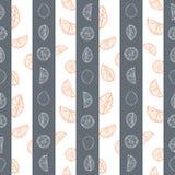 橙色和灰色手拉的柑桔和条纹无缝的传染媒介样式 皇族释放例证