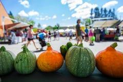 橙色和绿色南瓜待售在农夫的市场上 免版税图库摄影