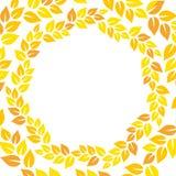 橙色和黄色秋叶花卉花圈圆的框架,传染媒介 库存照片