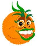 橙色回归线 免版税图库摄影