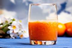 橙色圆滑的人 库存照片