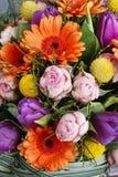 橙色大丁草雏菊、紫罗兰色郁金香和桃红色玫瑰花束  免版税图库摄影
