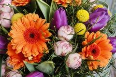 橙色大丁草雏菊、紫罗兰色郁金香和桃红色玫瑰花束  免版税库存照片