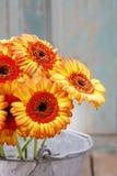 橙色大丁草雏菊花束在银色桶的 库存照片