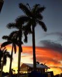 橙色天空 图库摄影