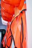 橙色安全背心和橙色安全帽 库存图片