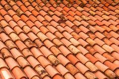 橙色屋顶木瓦 意大利背景的里雅斯特 库存图片