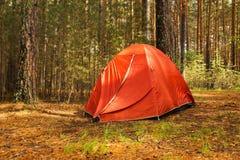 橙色帐篷在一个森林里在雨以后的一个晴天 免版税图库摄影