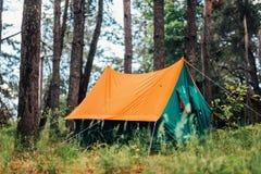 橙色帐篷在草的杉木森林里 免版税库存照片
