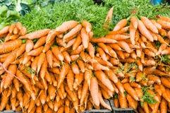 橙色新鲜的被开掘的红萝卜在市场上 库存照片