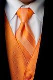 橙色无尾礼服脖子领带和背心 库存照片