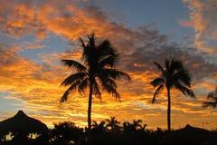 橙色日出在Marco海岛 库存图片