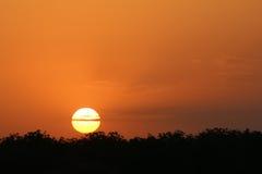 橙色日落 库存照片