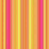 橙色桃红色数据条 图库摄影