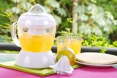 橙色榨汁器 免版税库存图片