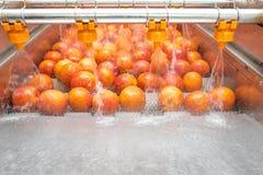 橙色清洁过程 免版税库存图片