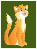 橙色猫 库存例证