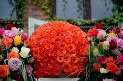 橙色玫瑰焦点花球 免版税库存照片