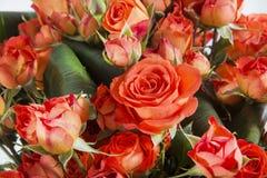 橙色玫瑰特写镜头花束 免版税图库摄影