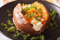 橙色白薯烘烤与乳脂干酪和荷兰芹关闭 免版税库存图片