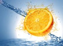 橙色的猕猴桃弄湿了 免版税库存图片