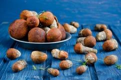橙色盖帽牛肝菌蕈类蘑菇(白杨木蘑菇) 免版税库存照片
