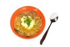 橙色碗汤用圆白菜 免版税库存照片