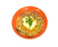 橙色碗汤用圆白菜 库存图片