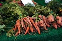 橙色红萝卜在农夫` s市场上 库存照片
