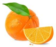 橙色细分市场 向量例证