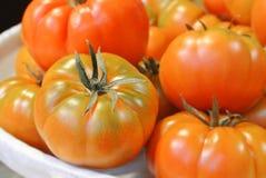 橙色绿色新鲜的有机生物农场大织地不很细汤姆特写镜头  免版税库存照片