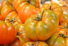 橙色绿色新鲜的有机生物农场大织地不很细汤姆特写镜头  库存照片