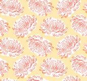 橙色翠菊 模式无缝的向量 免版税库存照片