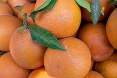 橙色股票 免版税库存图片