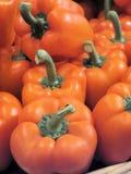 橙色胡椒 库存图片