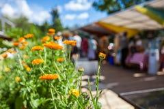橙色花在与模糊的人民的农夫的市场上 库存照片