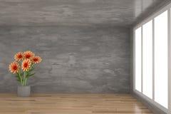橙色花在有窗口的具体屋子里在3D翻译 图库摄影